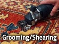 Area Rug Cleaning from Puritan Cleaners by Greenspring